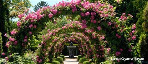 Flower Gardens In Houston Gardens Houston And Parks On
