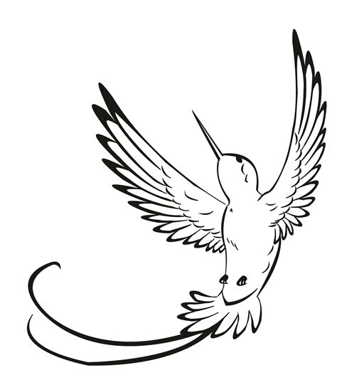 Hummingbird Outline by Hummingbird Vector The Hummingbird