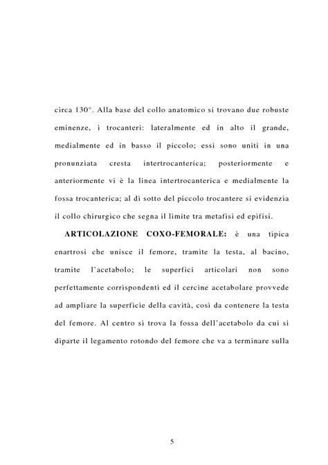 ap style cover letter alla base collo anatomico si trovano due robuste eminenze