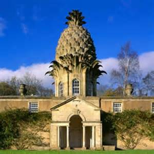 Pineapple House by Sponge Bob S House This Is A Real Pineapple House