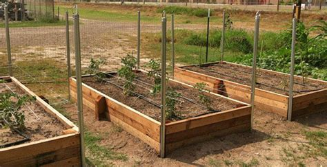 Diy Raised Timber Garden Beds