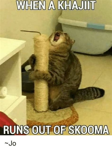 Khajiit Meme - when a khajiit runs out of skooma jo meme on sizzle