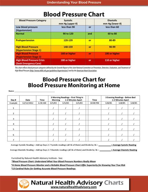 blood pressure template blood pressure chart templates free premium