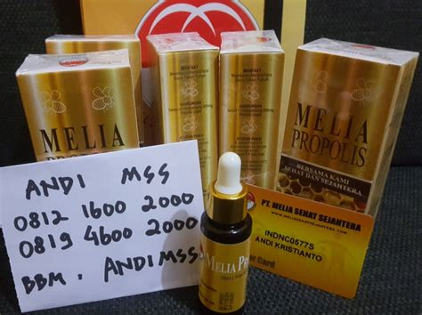 Terbatas Melia Propolis Asli Pt Mss 1box Isi 7 Botol melia propolis 30ml kemasan baru asli mss melia propolis biyang kosmetik skin care