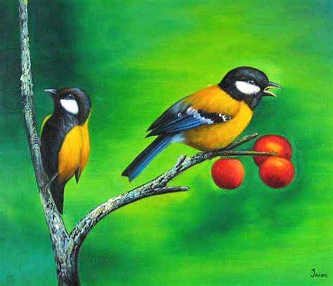 birds painting bird s paintings xcitefun net