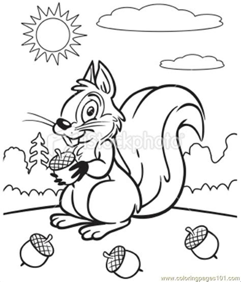 coloring pages book pdf coloring book of squirrel coloring page free squirrel