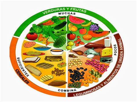 libro grandes platos para todos el plato del bien comer beneficios ciclo escolar