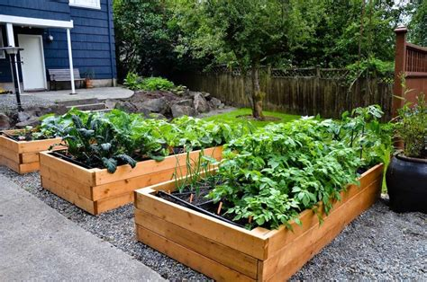 How To Make A Vegetable Garden In Your Backyard How To Make A Vegetable Garden In Your Backyard Garden