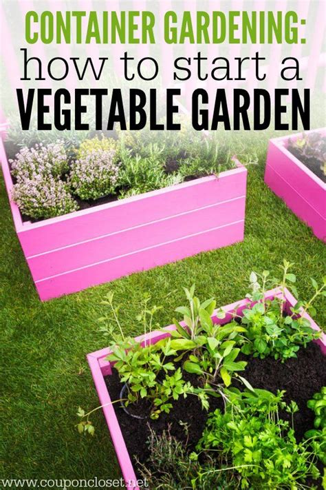 best 25 container vegetable gardening ideas on