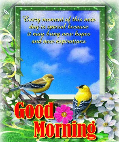 wallpaper gif good morning good morning sunday gif happy good morning sunday quotes