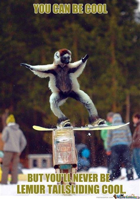 Snowboarding Memes - image gallery snowboarding memes
