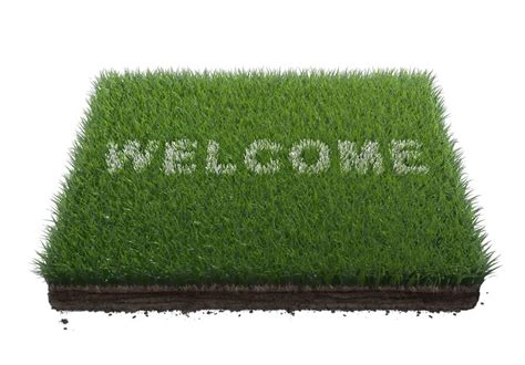 Mat Grass by Welcome Alfred Foundations