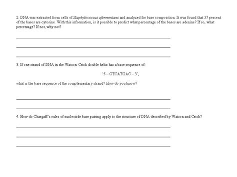 Dna Replication Worksheet Answers by 19 Best Images Of Dna Replication Structure Worksheet And