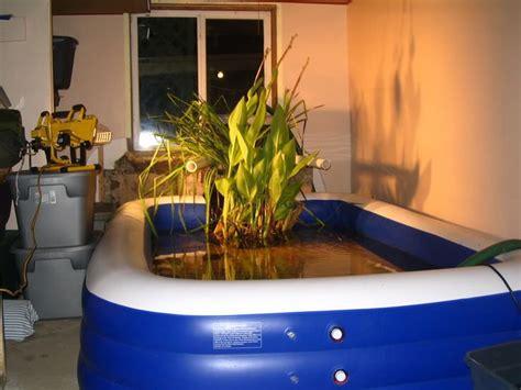 how to make an indoor fish pond indoor pond ideas building an indoor pond jpg indoor