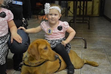 diabetes service dogs service helps keep diabetic child safe clarksvillenow