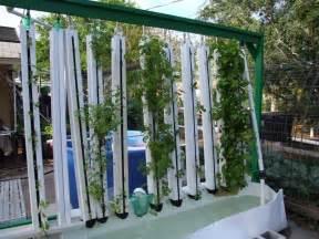 Vertical Garden Aquaponics Aquaponic Vertical Garden A Scam Proof Guide To
