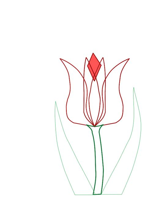 clipart tulip outline clipart panda free clipart images
