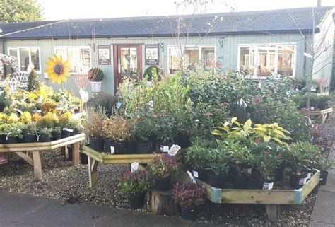whisby garden centre lincoln whisby garden centre lincoln updated 2018 top