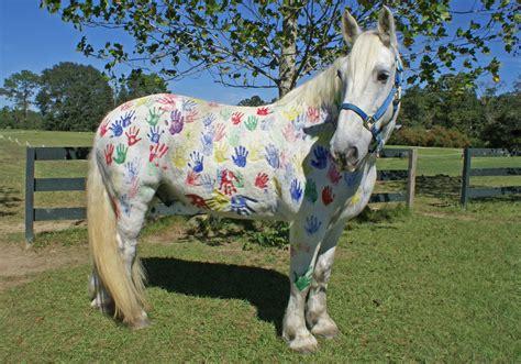 painting my pony painted pony