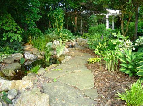 alberi da giardino sempreverdi da ombra piante da giardino ombra idea creativa della casa e dell