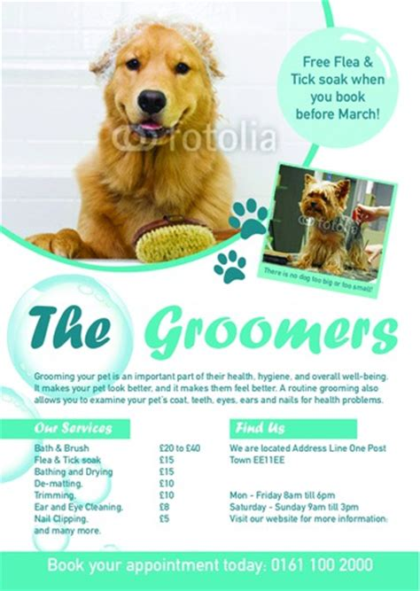 grooming flyers template print templates printing