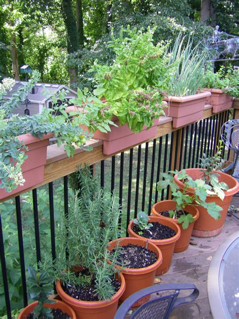 deck herb and vegetable gardens and orchard knitterings