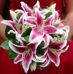 stargazer bouquet best 25 stargazer bouquet ideas on