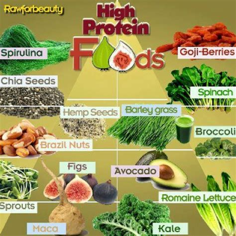 protein food sources can vegans and vegetarians stay