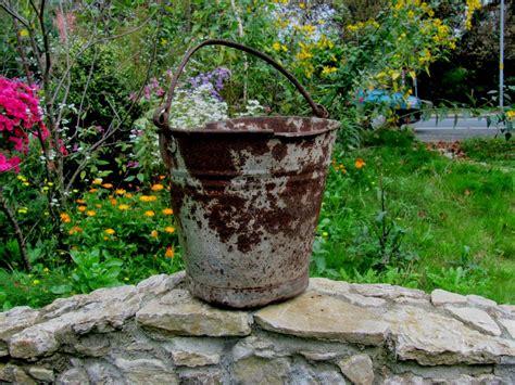 Pflegeleichte Sträucher Für Garten by Inspirationen Dekoration F 195 188 R Den Garten Deneme Ama 231 Lı