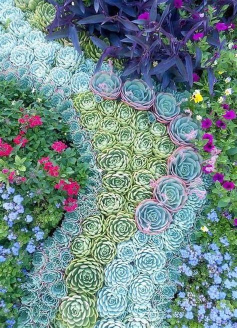 Diy Vertical Succulent Garden - creative indoor and outdoor succulent garden ideas 2017