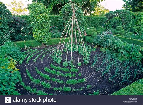 perennial garden vegetables formal vegetable garden with box hedge bed fruit