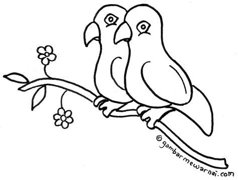 gambar mewarnai burung lovebird binatang