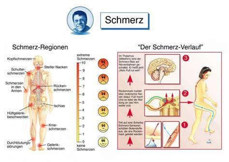 beinschmerzen beim liegen beinschmerzen ursachen behandlung komplikation