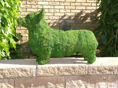 animal topiaries for sale top 720 ideas about corgi on pembroke