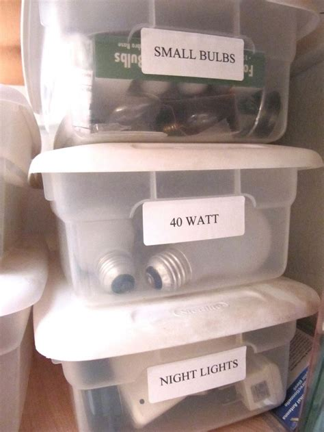 Bulb Storage Containers - pin by helen busch on organize my basement storage room
