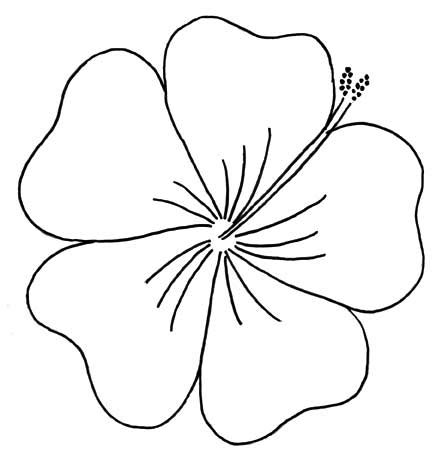 Hibiscus Flower Outline Cliparts Co Hawaiian Flower Template