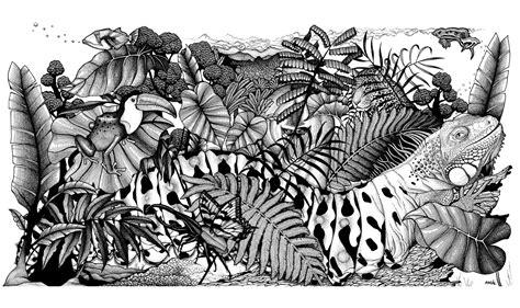 difficile jungle animaux animaux coloriages difficiles