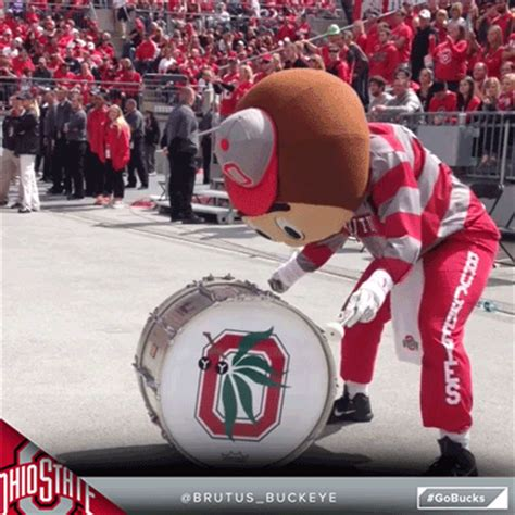 Ohio State Find Ohio State Football Gifs Find On Giphy