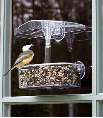 window bird feeders bird watcher supply