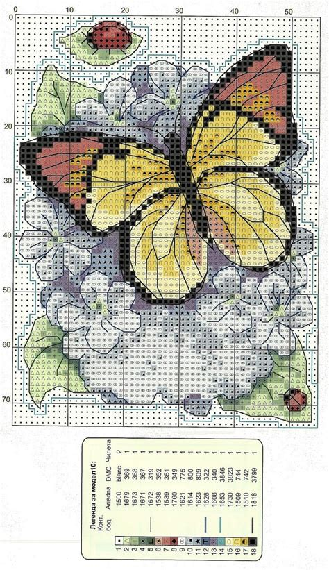 schemi punto croce fiori oltre 25 fantastiche idee su fiori a punto croce su