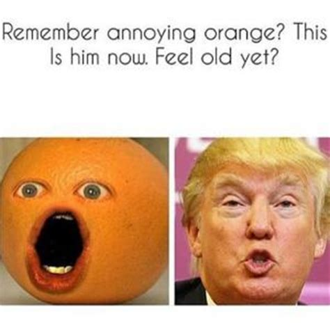 Orange Meme - annoying orange jokes kappit