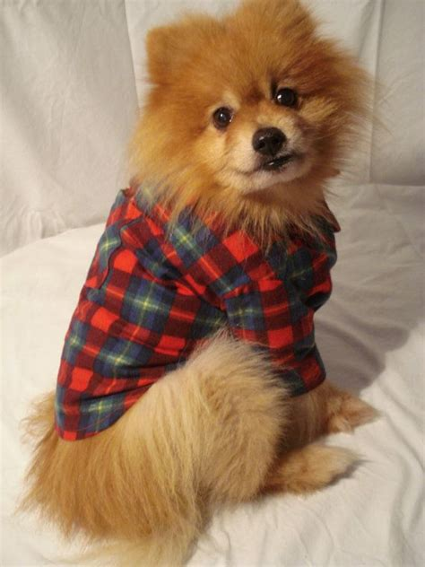 flannels for dogs flannel shirt with collar and cuffs