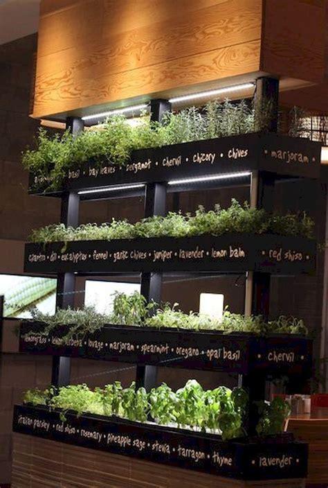 cool  easy   herb garden indoor ideas https