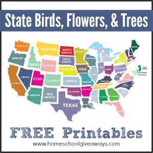 state birds flowers trees free printables