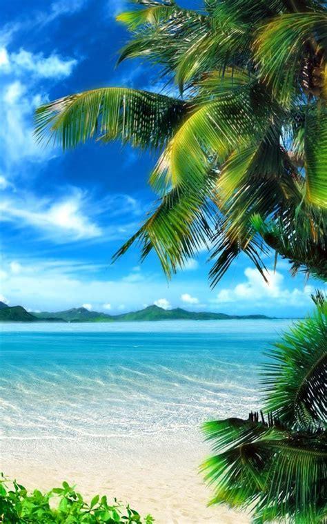 tropical beach  wallpaper app ranking  store data