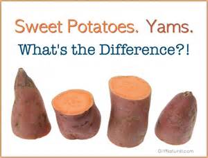 sweet potato yams is there a difference