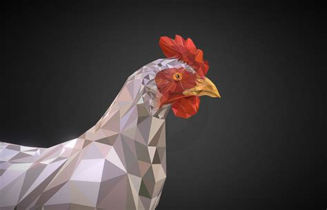 White Low Poly 3d model chicken white low polygon bird vr