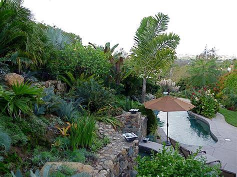 palm trees for backyard backyard landscaping ideas with palm trees izvipicom