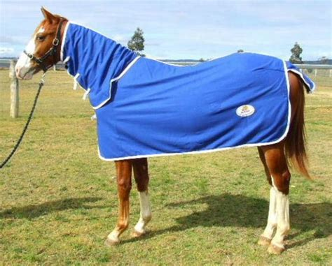 rugs for horses for sale alpine wool rug or combo top