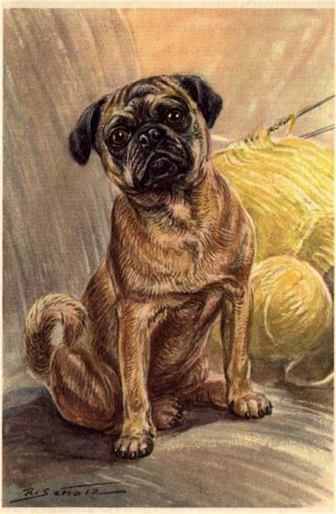 pug in german pug vintage prints gifts and artwork from dogsonthenet